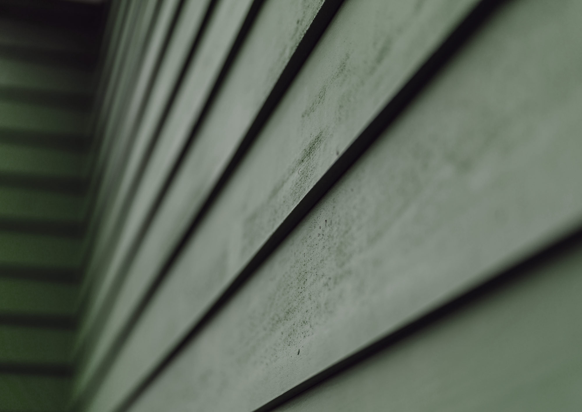 green timberthane siding up close